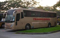 Transnational Bus